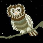 LiLLo - Nocturnal Landscapes 05022015